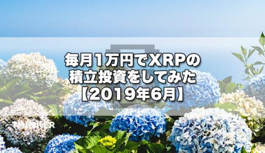 毎月1万円でXRPの積立投資をしてみた【2019年6月】《3ヶ月目》