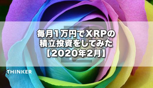 毎月1万円でXRPの積立投資をしてみた【2020年2月】《11ヶ月目》