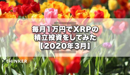 毎月1万円でXRPの積立投資をしてみた【2020年3月】《12ヶ月目》