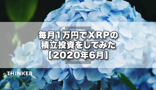 毎月1万円でXRPの積立投資をしてみた【2020年6月】《15ヶ月目》