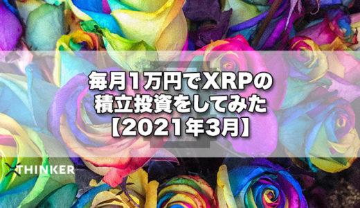 毎月1万円でXRPの積立投資をしてみた【2021年3月】《24ヶ月目》